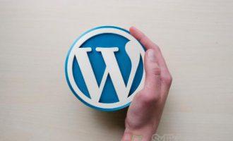 如何修改Word Press5.0版本的编辑器为中文版?