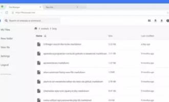 自建云盘系列——FileManager(基于Go的轻量级解决方案)